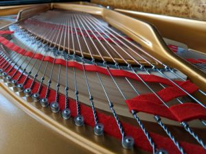 Fazioli string